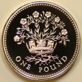 Flax Plant in Diadem on Reverse of 1986 Pound Coin Northern Ireland Design