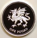 Welsh Dragon on Reverse of 1990 Pound Coin