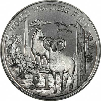 Cyprus Mouflon on Reverse of 1986 Cyprus Silver Proof Pound Coin
