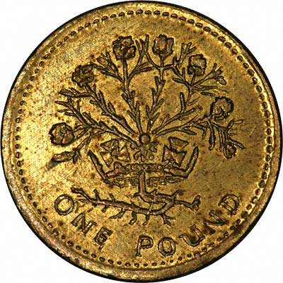 Reverse of 1986 Fake One Pound Coin