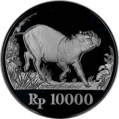 Babirusa on Reverse of 1987 Indonesian Silver Proof 10,000 Rupiah