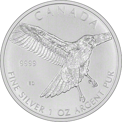 2015 Canadian Red-Tailed Hawk One Ounce Silver Coin Reverse