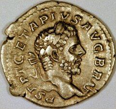 Portrait of Geta on a Silver Denarius